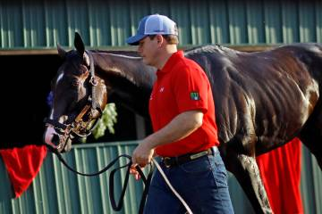 Cashing Big' author delves into high-quality stakes racing