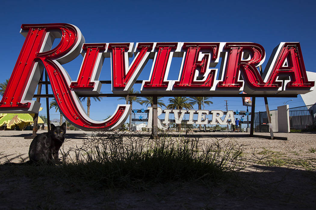 A cat roams around after a Riviera hotel-casino sign that was kept in storage was installed at the Neon Museum in Las Vegas on Friday, May 19, 2017. The sign is one of approximately 30 in storage  ...