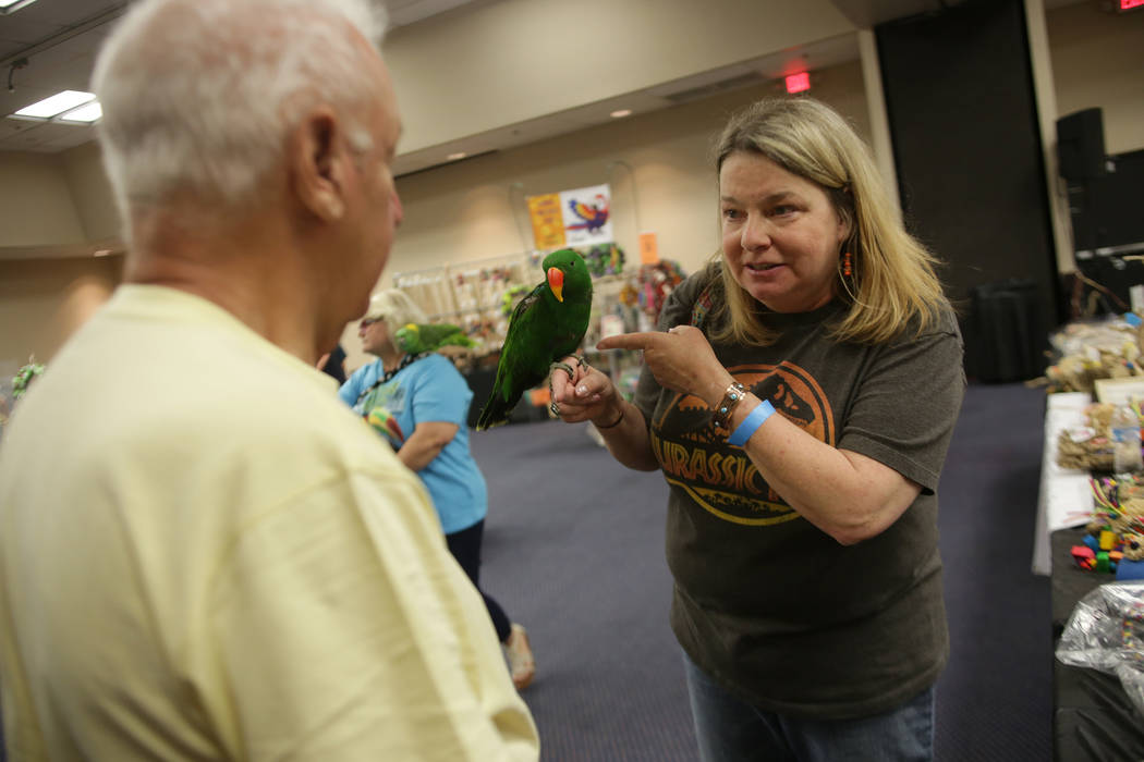 Flora Woratschek shows off her friend's bird Kiwi on Sunday, May 21, 2017, at the Bird Mart Show hosted by the Las Vegas Avicultural Society at the Henderson Convention Center in Henderson. Rachel ...