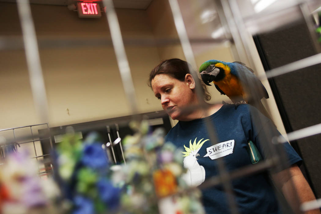 Skye Marsh holds her bird Radar as she shops on Sunday, May 21, 2017, at the Bird Mart Show hosted by the Las Vegas Avicultural Society at the Henderson Convention Center in Henderson. Rachel Asto ...