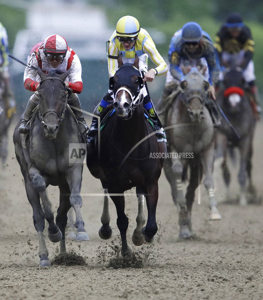 Cloud Computing, left, ridden by Javier Castellano, second from left, wins142nd Preakness Stakes horse race at Pimlico race course as Classic Empire (5) with Julien Leparoux aboard takes second, S ...