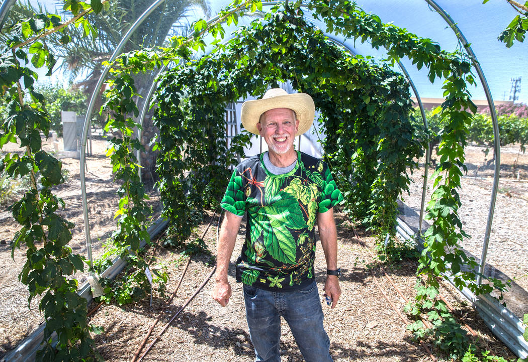 M.L. Robinson, a faculty member in the agriculture department at the University of Nevada, at the Research Center and Demonstration Orchard on Saturday, May 27, 2017, in Las Vegas. Benjamin Hager  ...