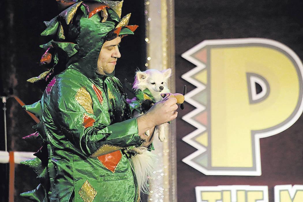 """The Piff the Magic Dragon Show"" (Edison Graff/Stardust Fallout)"