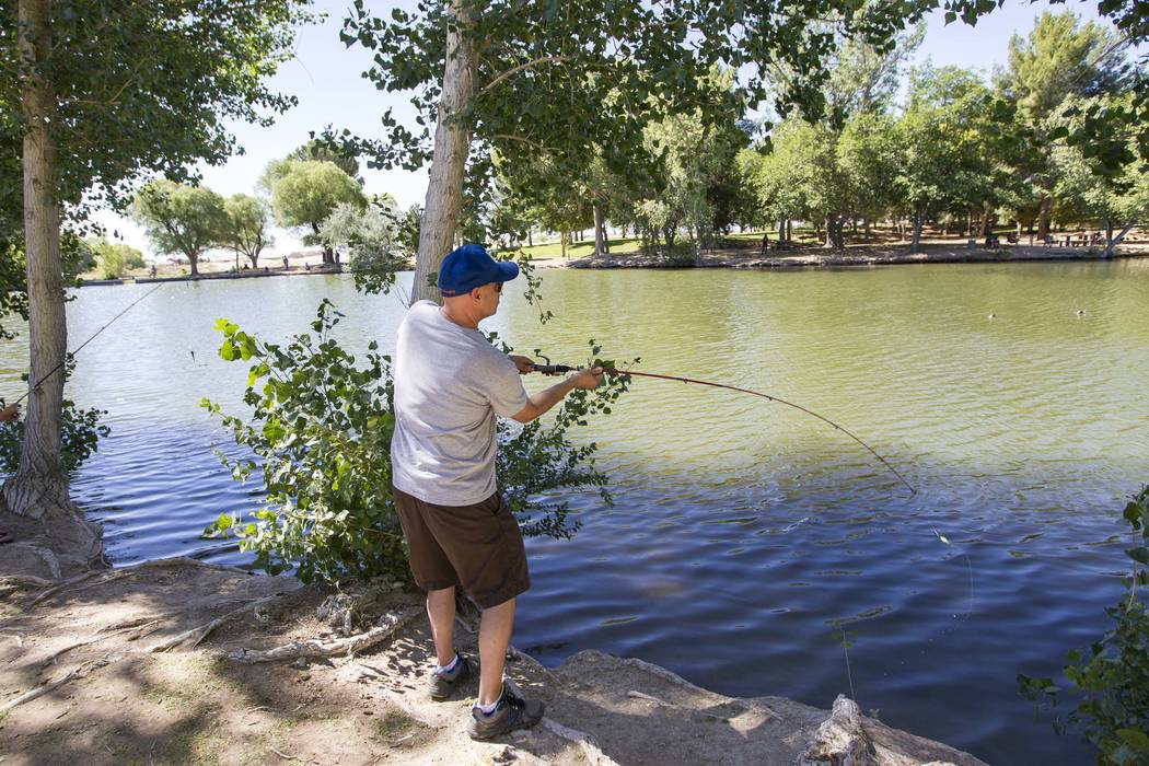 Nevada fishing report june 14 2017 las vegas review for Fishing lake mead from shore