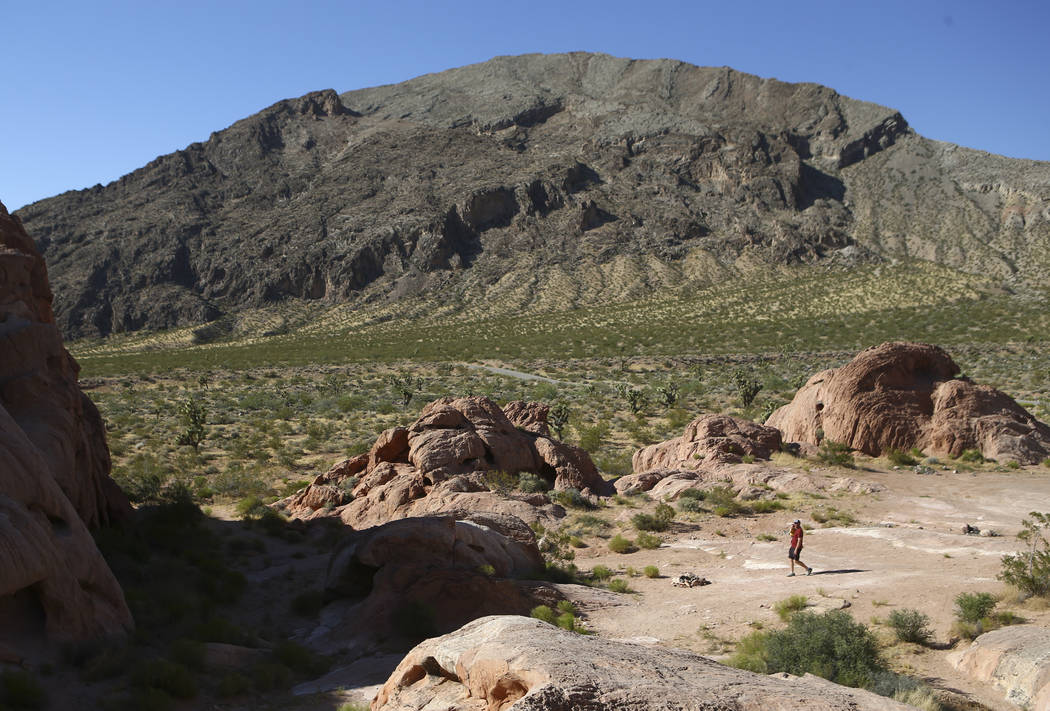 David Richards walks with his 9-month-old son Phoenix in the Whitney Pockets area of the Gold Butte National Monument south of Bunkerville on Friday, June 2, 2017. Chase Stevens Las Vegas Review-J ...