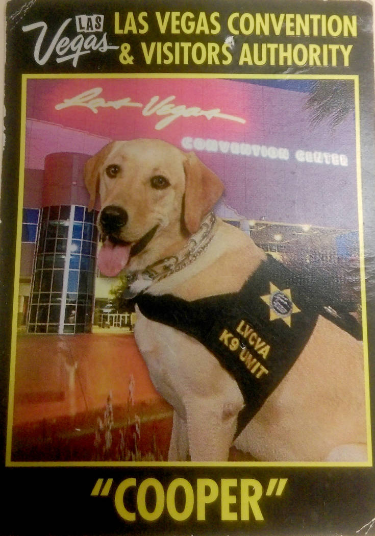Cooper, the bomb sniffing dog, and his handler Woody Chan, waited outside of a medical office for Las Vegas Convention and Visitors Authority CEO Rossi Ralenkotter in 2015 instead of looking for e ...