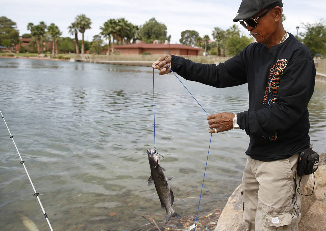 Renaldo Cabebe shows off his catch at Lorenzi Park on Thursday, June 8, 2017, in Las Vegas. The Nevada Department of Wildlife will celebrate free fishing day Saturday, June 10. Bizuayehu Tesfaye/L ...