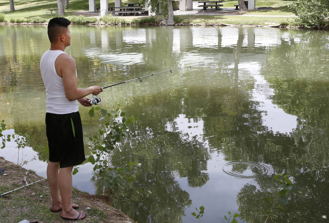 Bao Liu fishes at Floyd Lamb Park at Tule Springs on Thursday, June 8, 2017, in Las Vegas. The Nevada Department of Wildlife will celebrate free fishing day Saturday, June 10. Bizuayehu Tesfaye/La ...