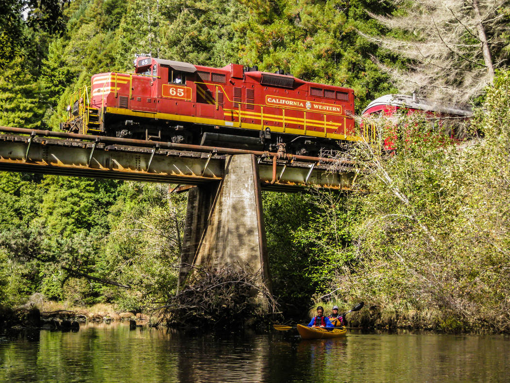 Skunk Train The 131-year-old Skunk Train takes passengers over the Noyo River with views of wildlife along the way.