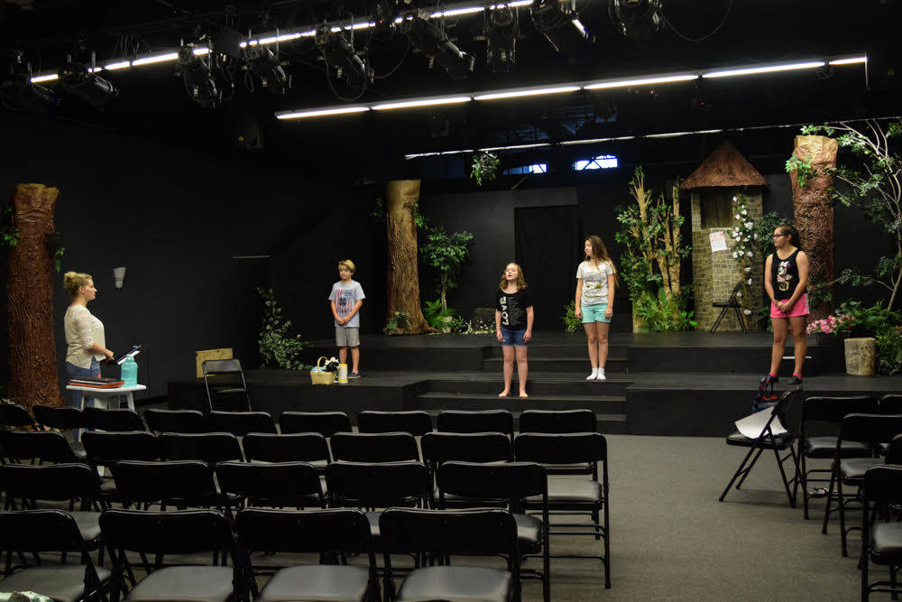 Seedling is currently offering summer workshops to students interested in acting or vocal performance as well as private lessons. (Alex Meyer/View) @alxmey
