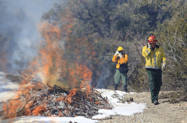 U.S. Forest Service Fire Prevention Officer Ray Johnson, right, protects his face from heat as he walks past a prescribed burn off of State Route 158 on Mount Charleston on Thursday, Feb. 16, 2017 ...