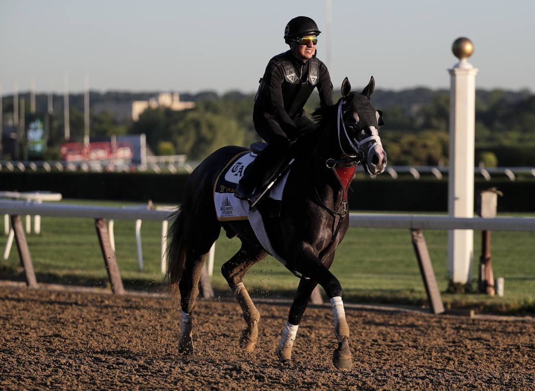 Belmont Stakes hopeful Tapwrit trots around the track during a workout at Belmont Park, Thursday, June 8, 2017, in Elmont, N.Y. Tapwrit will be one of 12 horses competing in the 149th running of t ...