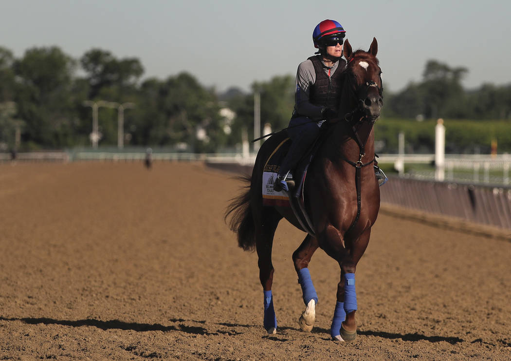 Belmont Stakes hopeful Irish War Cry jogs around the track during a workout at Belmont Park, Thursday, June 8, 2017, in Elmont, N.Y. Irish War Cry will be one of 12 horses competing in the 149th r ...