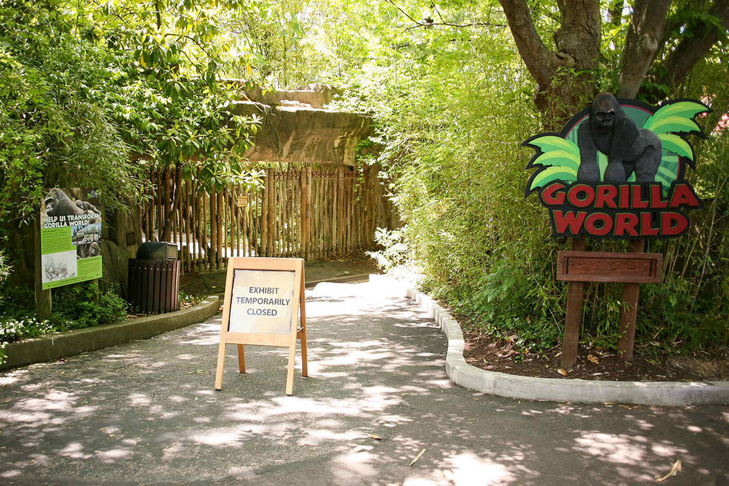 The entrance to the Cincinnati Zoo's Gorilla World exhibit was closed, two days after a boy tumbled into its moat and officials were forced to kill Harambe, a Western lowland gorilla, in Cincinnat ...