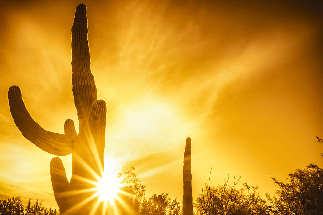There were more heat-related deaths in Maricopa County — the suburban Phoenix area — in 2016 than any year on record, an official says. (Thinkstock)