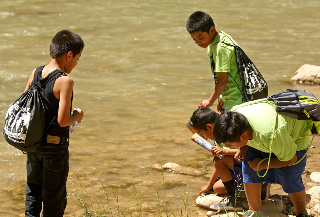 "Students from Kermit R. Booker and Matt Kelly Elementary Schools splash in the Virgin River at Zion National Park during the ""1 Million African American Youth In A Park"", Saturda ..."