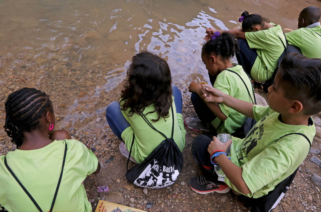 "Students get their hands wet in the Virgin River at Zion National Park during the ""1 Million African American Youth In A Park"", Saturday, June 10, 2017. One hundred fifty childre ..."