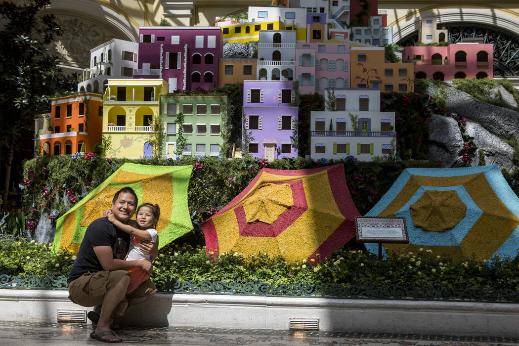 Kenny Nguyen and his daughter Serena, 4, of Garden Grove, Calif. take a photo together during the opening of the new Italian-inspired display at Bellagio's Conservatory & Botanical Gardens on  ...