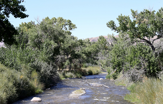 The Walker River State Recreation Area will add more than 12,000 acres to Nevada's state parks with land donated from the Walker Basin Restoration Program. The planned recreation area is in wester ...