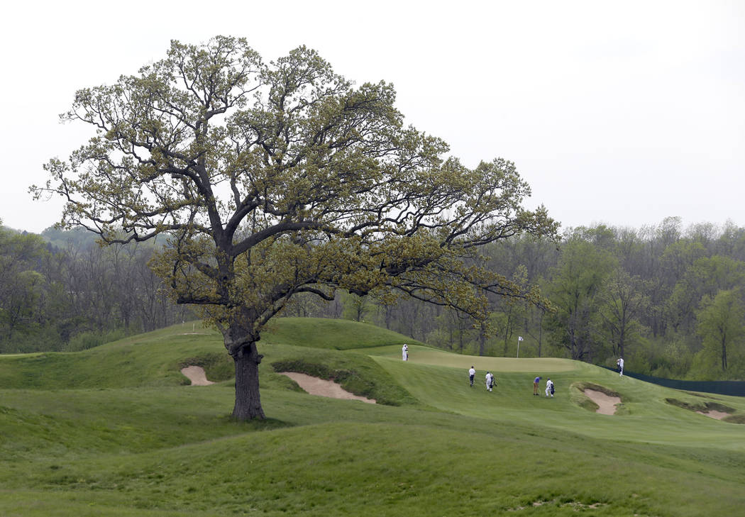 FILE - In this May 17, 2017, file photo, a lone oak tree stands between the 15th and 16th holes during the U.S. Open golf tournament media day at Erin Hills, Wis. Erin Hills is the longest U.S. Op ...