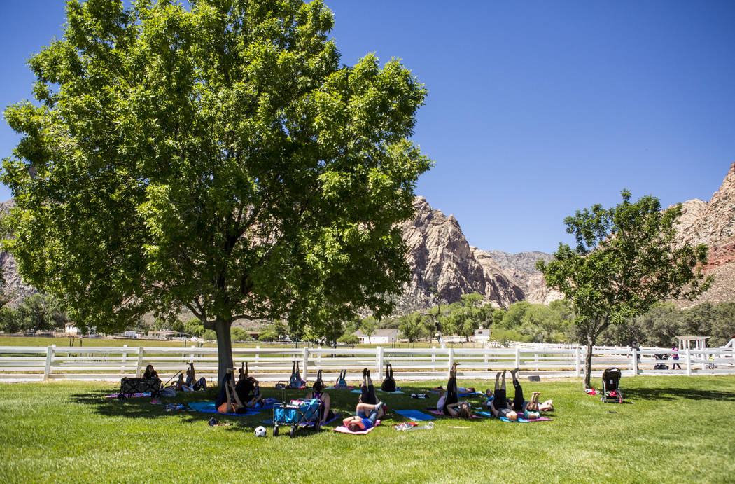 A family yoga class led by Fairon Quick at Spring Mountain Ranch State Park on Wednesday, June 14, 2017.  Patrick Connolly Las Vegas Review-Journal @PConnPie