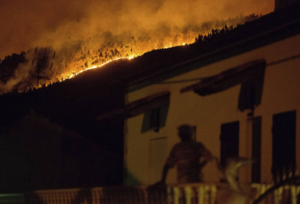 Portugal fires: Plane crashes while fighting deadly blazes