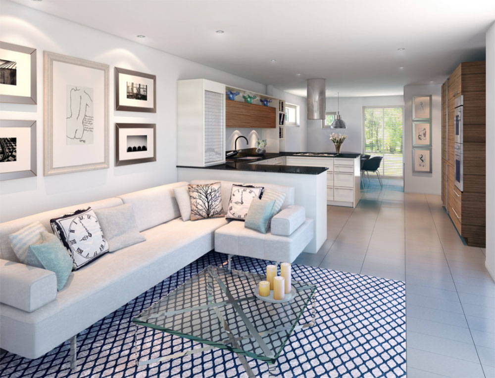 Houzz This rug defines one area and warms up the small space.