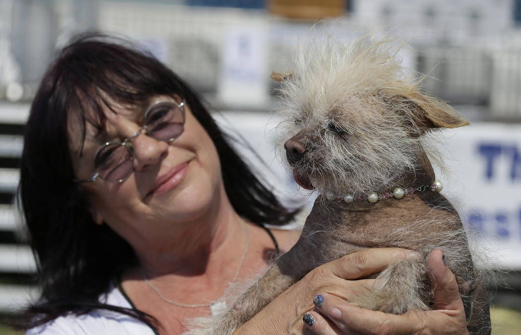 Linda Elmquist, of Tucson, Arizona, holds up Josie, her Chinese crested mix, before the start of the World's Ugliest Dog Contest at the Sonoma-Marin Fair Friday, June 23, 2017, in Petaluma, Califo ...