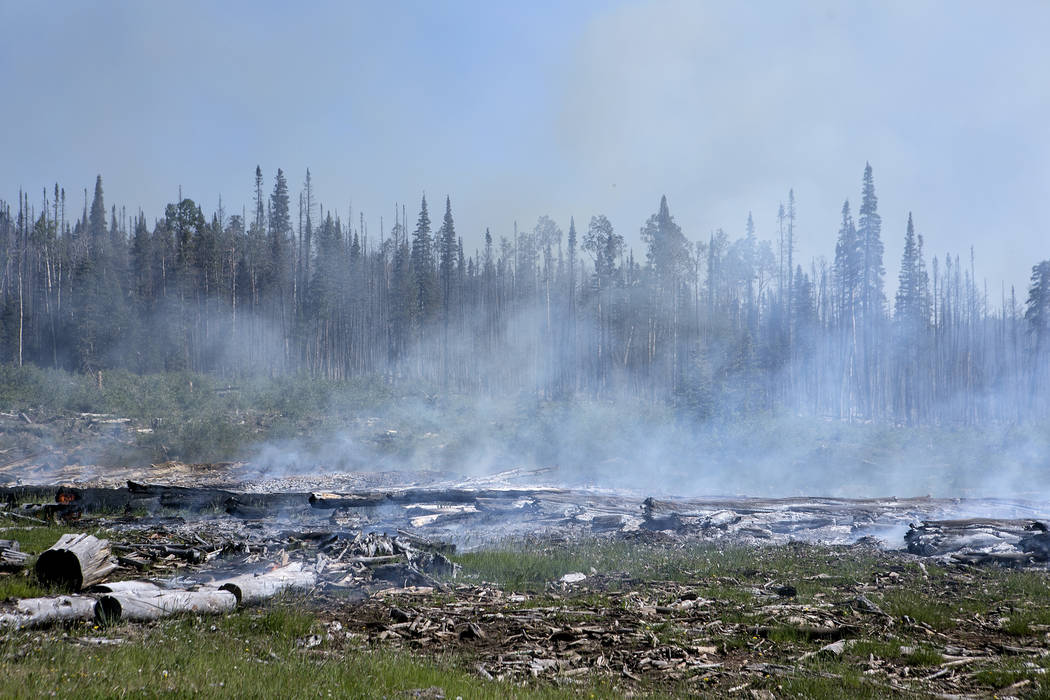 Smoke rises as logs smolder in Dixie National Forest off State Route 143 on Tuesday, June 27, 2017. Bridget Bennett Las Vegas Review-Journal @bridgetkbennett