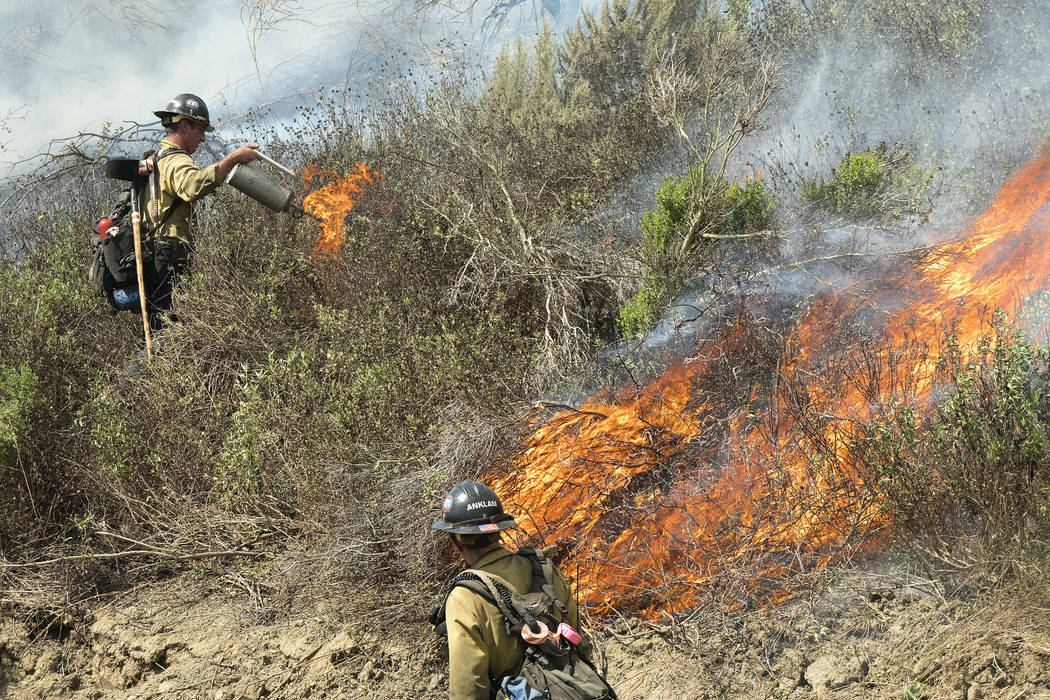 Firefighters set back fires as they work to put out a brushfire in San Clemente, Calif., Thursday, June 29, 2017. Firefighters on Thursday were also battling wildfires in New Mexico, Utah, Washing ...