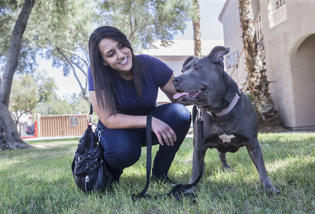 WAG dog walker Amy Abdelsayed walks a blue pit bull named Princess on Tuesday, June 13, 2017, at the apartment complex of WAG customer Joseph Thomas, in Las Vegas. (Benjamin Hager/Las Vegas Review ...