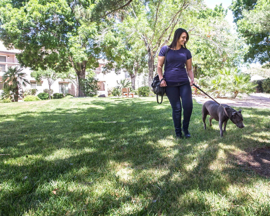 how to become a wag dog walker