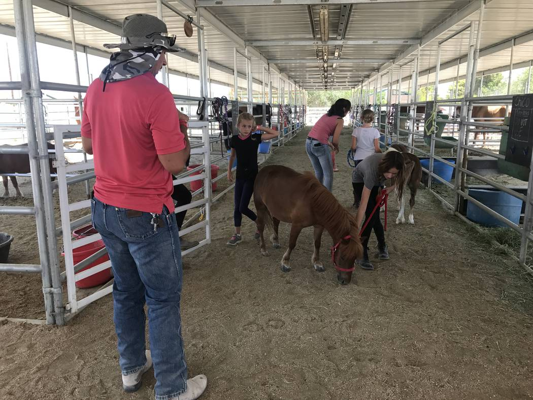 Jeremy Tiderman instructs students while they practice walking a small horse during the Horses4Heroes' summer camp at the community equestrian center at Floyd Lamb Park at Tule Springs on June 27. ...