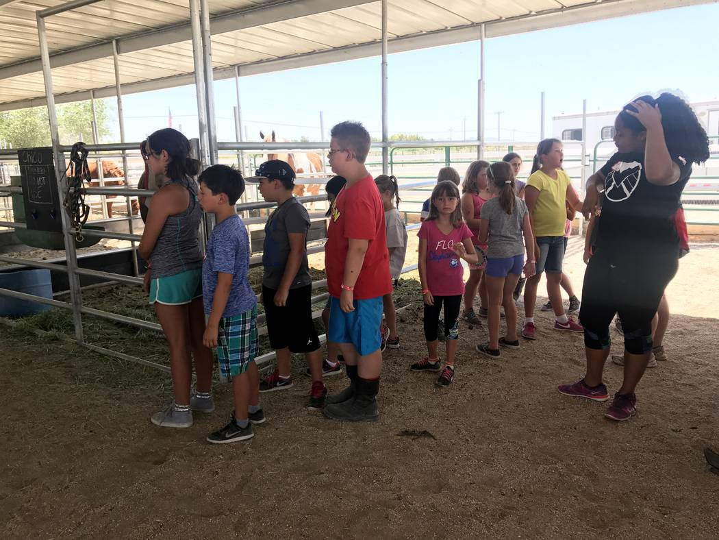 Students wait to practice walking a horse at the Horses4Heroes' summer camp at the community equestrian center at Floyd Lamb Park at Tule Springs on June 27. (Kailyn Brown/View) @KailynHype