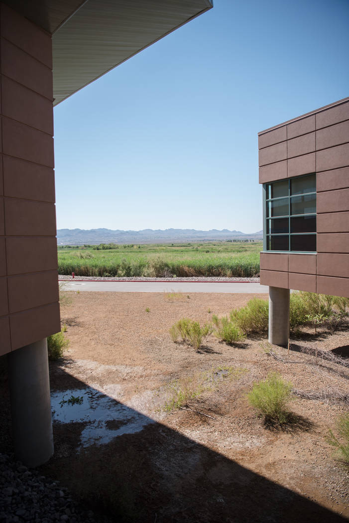 The view from Clark County Wetlands Park on Saturday, July 1, 2017, in Las Vegas. Morgan Lieberman Las Vegas Review-Journal