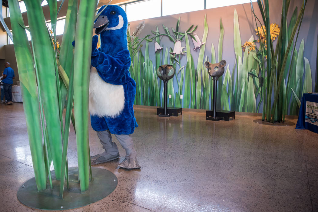 """Another """"live"""" animal appearance, hiding from arriving children, at Clark County Wetlands Park's annual Summer Open House on Saturday, July 1, 2017, in Las Vegas. Morgan Lieberma ..."""