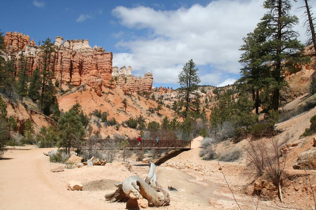 Hikers walk across the footbridge along the Mossy Cave Trail. (Deborah Wall)