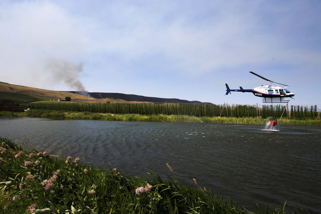 As Rattlesnake Ridge continues to burn in the distance, a fire fighting helicopter loads water into a bucket in Moxee, Wash., on Thursday, July 6, 2017. The fire burned more than 5,500 acres of mo ...