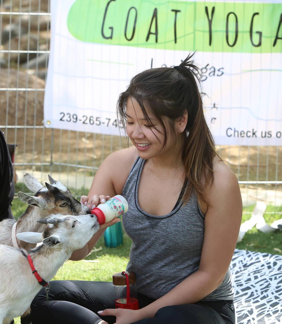 Nicole Munoz feeds baby goats after taking a goat yoga class at Western Trails Neighborhood Park in Las Vegas on Saturday, July 8, 2017. Bizuayehu Tesfaye/Las Vegas Review-Journal @bizutesfaye