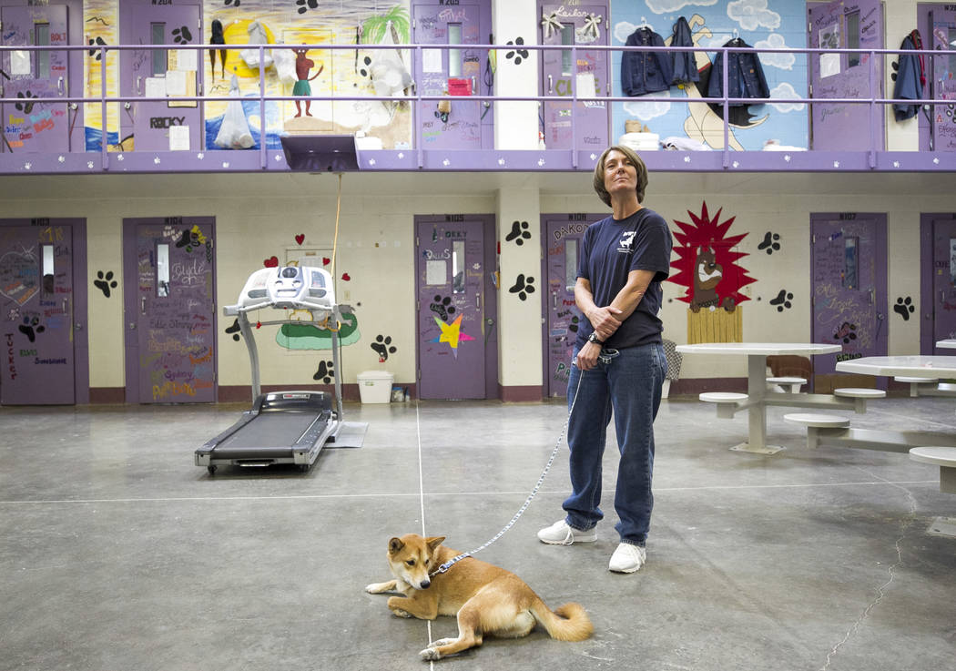Inmate Lisa Crispin with Mochi, a shiba inu, inside the Pups on Parole cell block at the Florence McClure Women's Correctional Center in Las Vegas on Tuesday, July 11, 2017. Richard Brian Las Vega ...