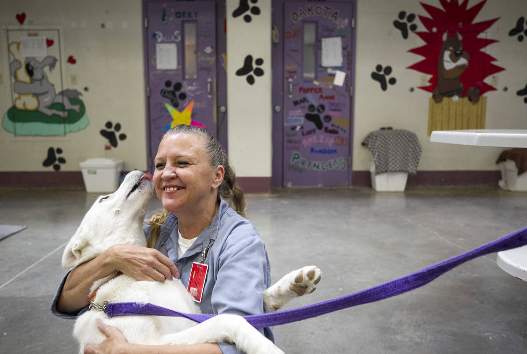 Inmate Christine Corona gets a lick from Stormy, a Siberian husky, inside the Pups on Parole cell block at the Florence McClure Women's Correctional Center in Las Vegas on Tuesday, July 11, 2017.  ...