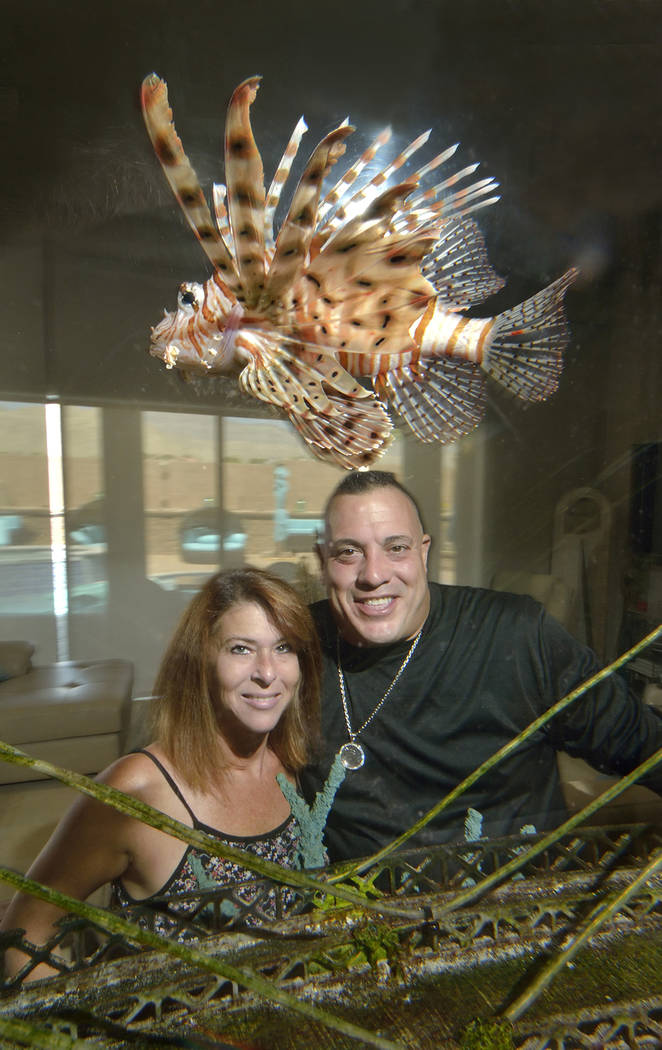 "Wayde King, star of ""Tanked"" on Animal Planet, and his wife, Heather, look at a lionfish swim by in their home aquarium. (Bill Hughes/Real Estate Millions)"