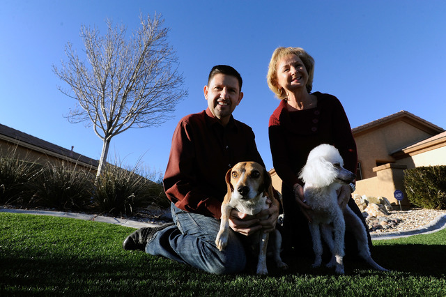 Nevada State Sen. Mark Manendo, left, and Robin Reddle play with their dogs, Carson, left and Coco near their las Vegas home on Sunday, Dec. 22, 2013. (David Becker/Las Vegas Review-Journal)