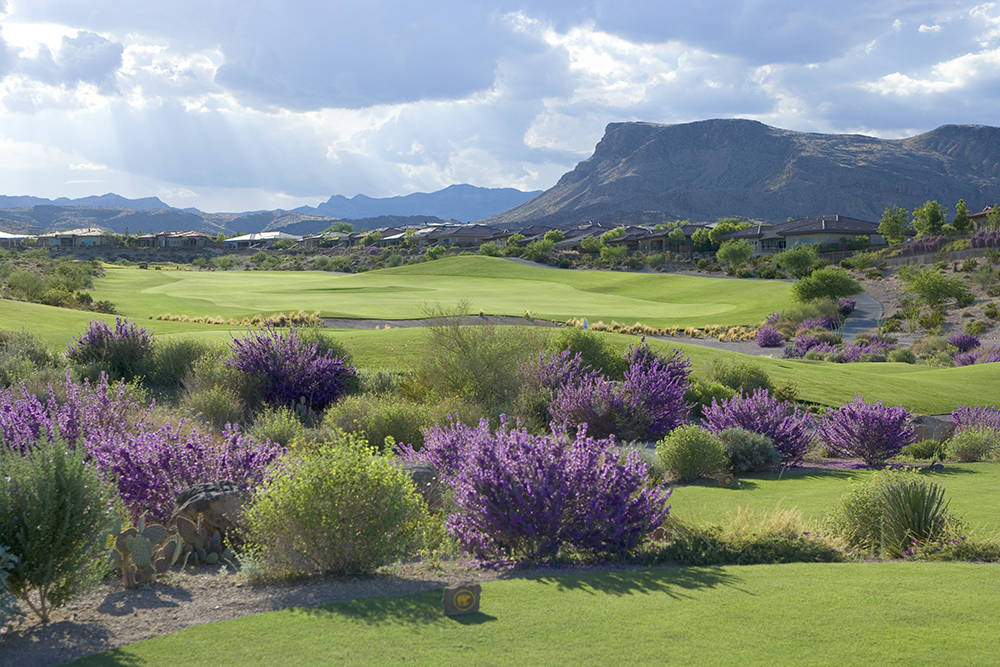 The 3.86-acre site is perched overlooking a pond on the first hole at Jack Nicklaus's Bears Best golf course that runs through The Ridges.  (Summerlin)