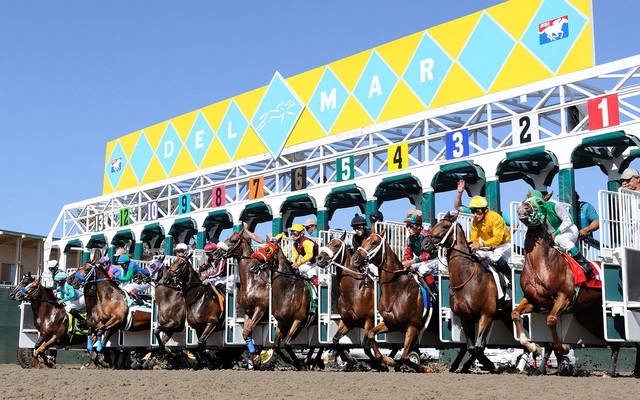 Horse racing betting analyst journal sports betting experts