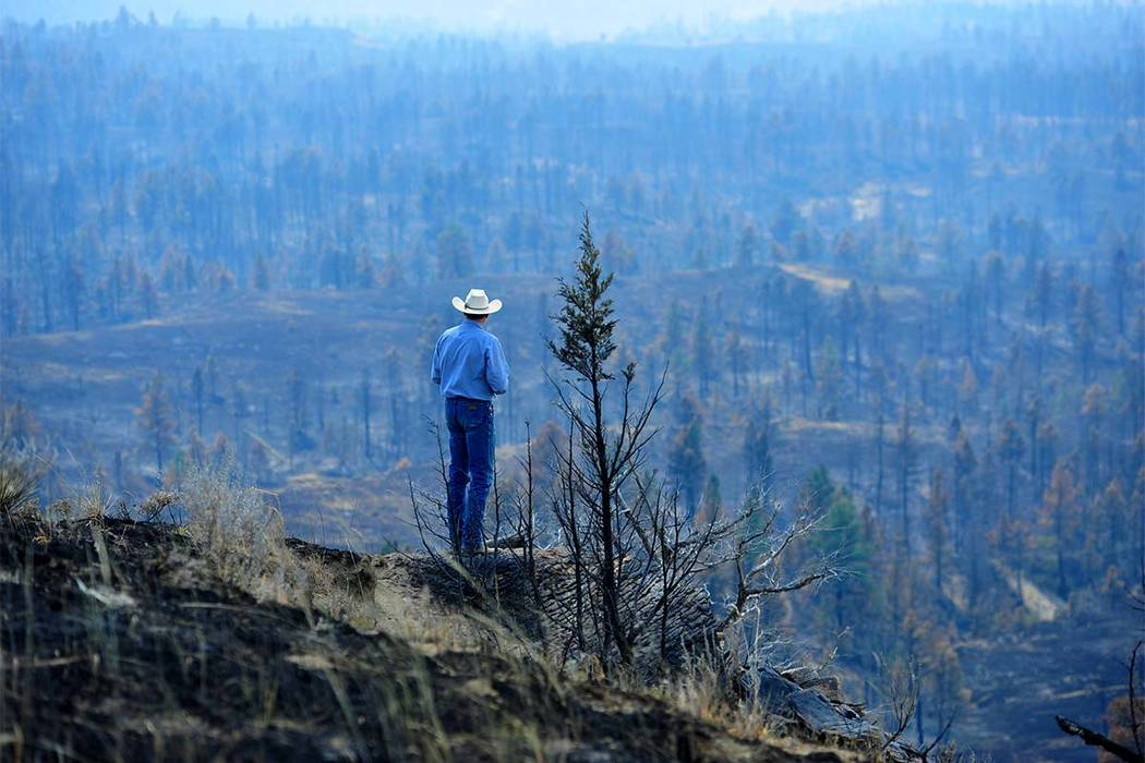 Tim Weyer tours his ranch, which was consumed by wildfires, Tuesday, July 25, 2017 in Sand Springs, Montana. Firefighters say they have stopped most of the growth and gained 20 percent containment ...