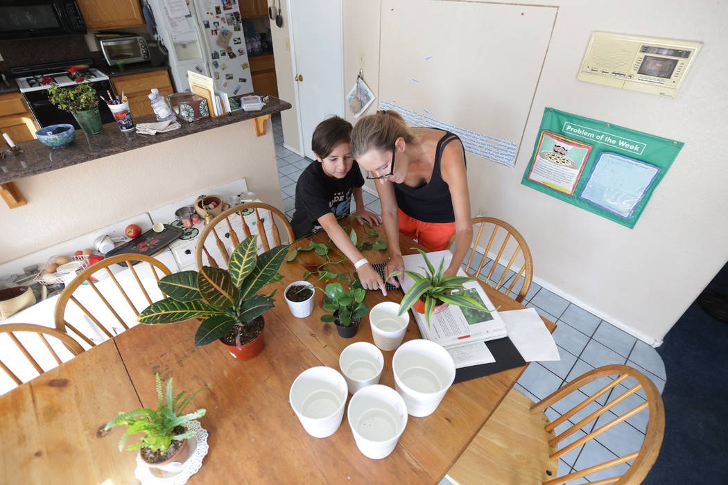 Elissa Wahl plants with her son Sebastian Wahl, 10, on Wednesday, Aug. 2, 2017, at their home in Las Vegas. Elissa was instrumental in lobbying for the current laws that now govern Nevada's home-s ...