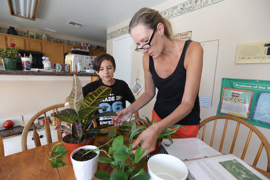 Elissa Wahl plants with her son Sebastian Wahl, 10, on Wednesday, Aug.  2, 2017, at their home in Las Vegas. Elissa was instrumental in lobbying for the current laws that now govern Nevada's homes ...