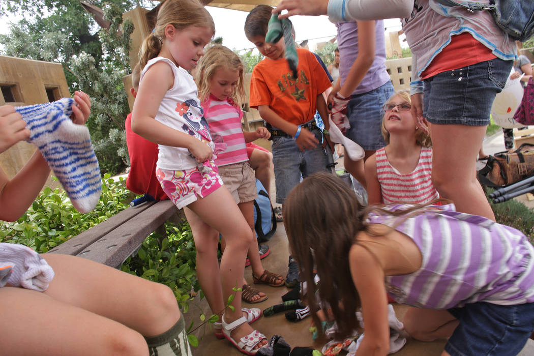 Students from Wise Owls, a home-school group, gather socks to put over their shoes for a lesson about botany at Springs Preserve on Thursday, June 8, 2017, in Las Vegas. Rachel Aston Las Vegas Rev ...
