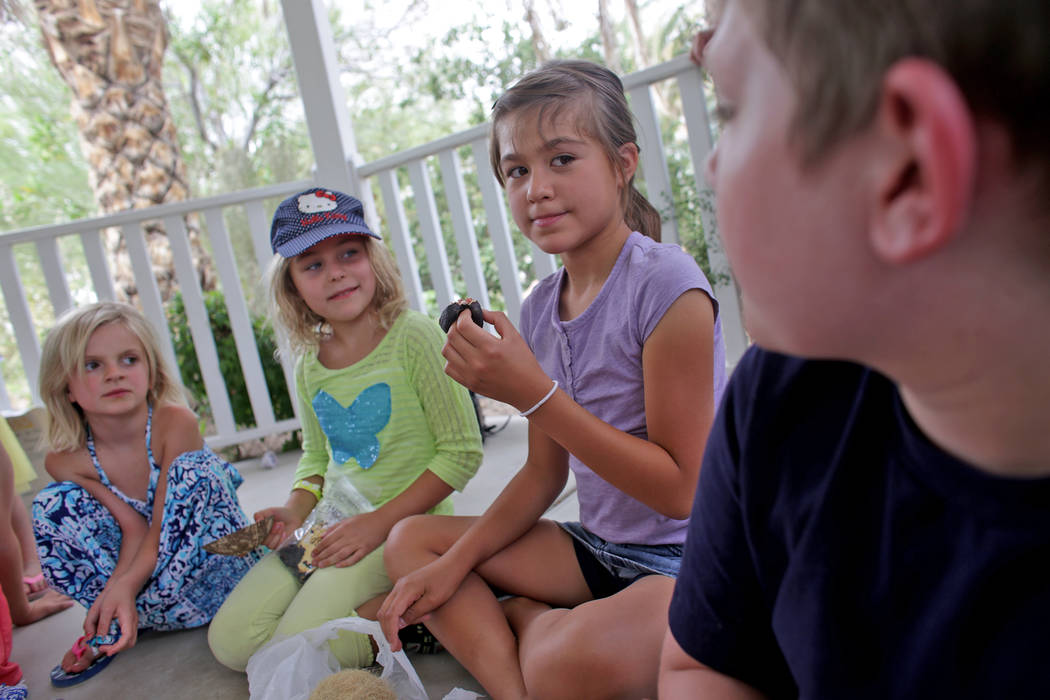 Olivia Runco, 7, from left, Frankie Feher, 6, and Emmaline Stewart hold different kinds of seeds for a lesson on botany at Springs Preserve on Thursday, June 8, 2017, in Las Vegas. They are studen ...